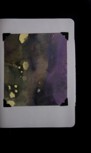 Ms. Schwarz submitted her artist's book to The Sketchbook Project last January